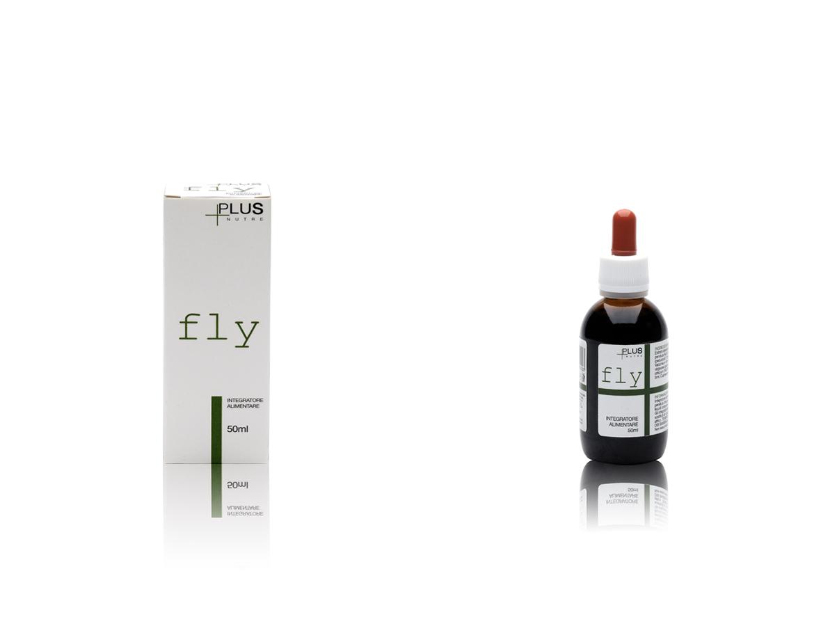slide-home-new-fly