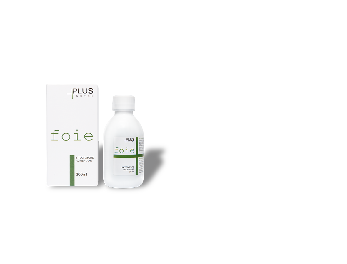 slide-promo-foie-1
